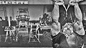 elitefts monster garage gym dave tate technique matters youtube