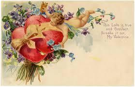 vintage valentines cherubs violets vintage image
