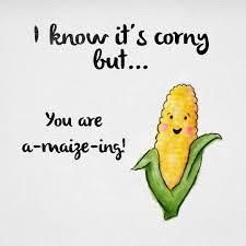 best 25 corny quotes ideas on cheesy lines