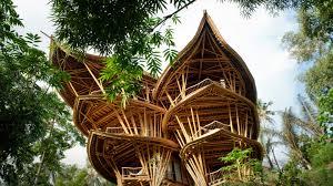 magical houses made of bamboo elora hardy youtube