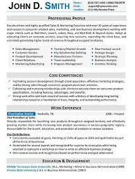 Examples Of Business Resumes The 25 Best Resume Format Examples Ideas On Pinterest Resume