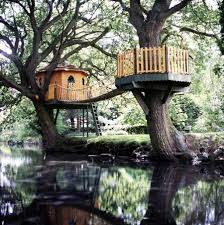 gorgeous tree houses to live in area near the river home