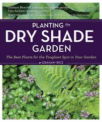 planting the dry shade garden the best plants for the toughest