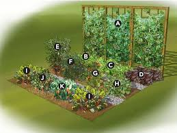 elegant flower and vegetable garden layout garden plans