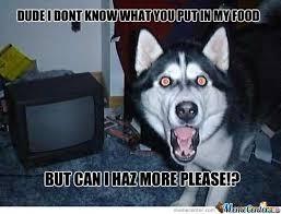 Cool Dog Meme - cool dog food meme funny black baby meme i want food for whatsapp