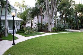 Landscaping Company In Miami by Roam A Coliving Startup For The Creative Nomad Opens In Miami