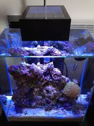fluval edge marine light another diy led setup fluval edge lighting mod ultimate reef