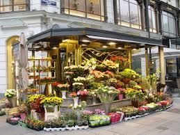 floral shops flower shop search miniature flowers gardens