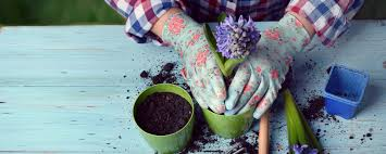 get your garden ready for spring living outdoors