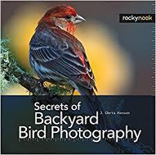 The Backyard Bird Company - secrets of backyard bird photography amazon co uk j chris