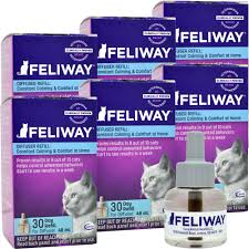 Comfort Zone With Feliway Feliway Diffuser Refill 6 Pack Entirelypets