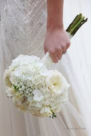 White Hydrangea Bouquet White Hydrangea Bouquet Archives Passion For Flowers Blog
