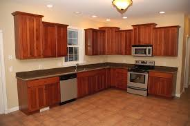 Best Kitchen Cabinets For The Money by Best Kitchen Cabinets For The Money