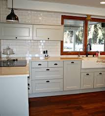 Kitchen Cabinet Paint Finishes Kitchen Cabinet Painting Kitchen Traditional With Cabinet Finishes