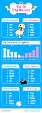 10 boxer dog facts male dog names jpg 474 575 pixels my style pinterest boy dog
