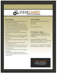 cv template professional curriculum vitae design by 100 free