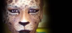 Create Halloween Costume Create Halloween Leopard Cheetah Face Makeup