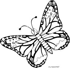 coloriage codã papillon maternelle