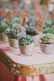 best 25 succulent party favors ideas on pinterest succulent