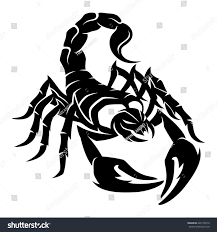 Plan Icon Stock Photos Images Amp Pictures Shutterstock Vector Sign Scorpion 1st Goal Pinterest Scorpion
