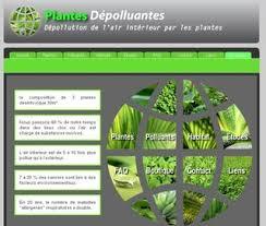 plantes dépolluantes chambre à coucher le pouvoir des fleurs plantes dépolluantes