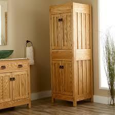 bathroom closet door ideas home design ideas