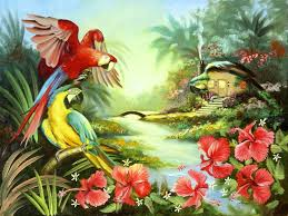 miscellaneous macaw wildlife four nature beautiful birds seasons