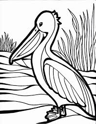 superb ideal bird coloring pages printable pic astounding