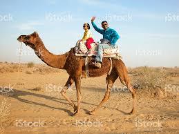 thar desert tourists on camel in the thar desert of rajasthan india stock