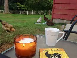 breakfast with the chickens u2026and other odds and ends u2013 mrs smythe