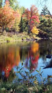 colors oxtongue river dwight
