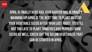 when should you start planting a vegetable garden whole organic