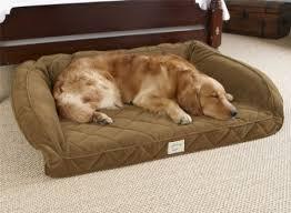 Ll Bean Dog Bed Kirkland Dog Bed Monogrammed Dog Beds Dog Burrow Bed Hooded Dog
