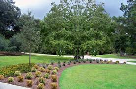 florida landscape architecture contemporary pertaining to