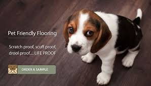 pet flooring scratch scuff noise resistant flooring