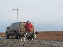 Kavik Alaska Map by Bear Dogs Key Uses For Wildlife Conservation The Folk