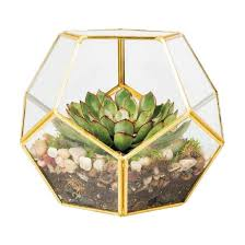 hx 7767 round indoor hanging geometric glass globe terrarium