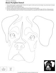 boxer dog jaw 22 downloadable dog breed pumpkin stencils stenciling dog