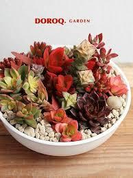 s駱arateur tiroir cuisine les 156 meilleures images du tableau botany sur