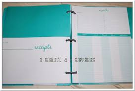 Mead Expense Tracker by 3 Garnets 2 Sapphires Giveaway Review Mead Organizher