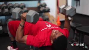 Training Bench Press Athletic Gaines Nfl Combine Training Dumbbell Bench Press Stack