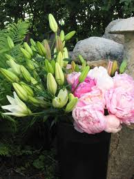 How To Revive Flowers In A Vase Cutting And Storing Peony Blossoms U2014 Boreal Farms