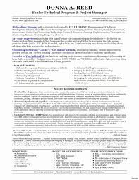 project manager resume technical project manager resume summary best of solution