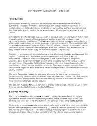 worksheet starfish dissection worksheet fiercebad worksheet and