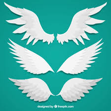several wings in flat design vector free