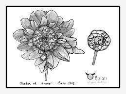 Wholesale Home Decor Fabric by Rose E2 80 93 Pencil Art Drawing Flower Loversiq