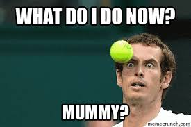 Andy Murray Meme - murray