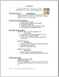 cleaner sle resume donnasdiscountdeals info
