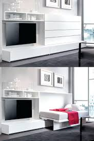 Wall Mounted Folding Bed Beds That Fold Into The Wall La Literal Wall Beds By Lievore