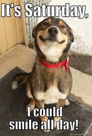 Funny Saturday Memes - saturday images google search saturday pinterest saturday images